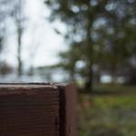 NEX-5N @ ISO 100, 1/80 sec. 20mm F/2.8. ebelbeb, https://www.flickr.com/photos/ebelbeb/