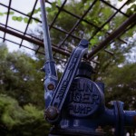 Unknown camera @ ISO ???, ??? sec. ???mm F/???. Tsuyoshi Nakatani, https://www.flickr.com/photos/haya_bs/