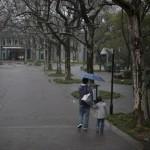 N Digital @ ISO 50, 1/350 sec. 50mm F/1.4. tadatomo, https://www.flickr.com/photos/tadatomo7/