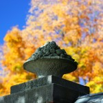 Canon EOS REBEL T3i @ ISO 100, 1/200 sec. 50mm F/2.8. tenchiro, http://www.flickr.com/photos/tenchiro/