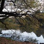 NIKON D610 @ ISO 125, 1/50 sec. 24mm F/8. Second Lake, https://www.flickr.com/photos/secondlake/