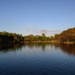 NIKON D610 @ ISO 100, 1/400 sec. 24mm F/8. Second Lake, https://www.flickr.com/photos/secondlake/