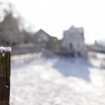 Canon EOS 5D Mark II @ ISO 100, 1/5000 sec. 50mm F/2. M.S.B., https://www.flickr.com/photos/m-s-b/