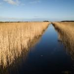 M9 Digital Camera @ ISO 160, 1/500 sec. 21mm F/4. Peter Lueck, https://www.flickr.com/photos/peterlueck/