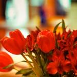 M8 Digital Camera @ ISO 160, 1/30 sec. 50mm F/4. david, http://www.flickr.com/photos/hoodooyoudo/
